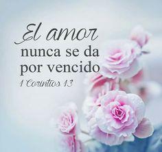 El amor nunca se da por vencido..