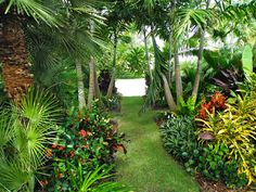For this home, it was determined that landscaping sculptures and garden statues were to be an important part of the overall designs. Small Tropical Gardens, Tropical Garden Design, Tropical Backyard, Tropical Landscaping, Tropical Plants, Small Garden Landscape, Modern Landscape Design, Side Yard Landscaping, Landscaping Ideas