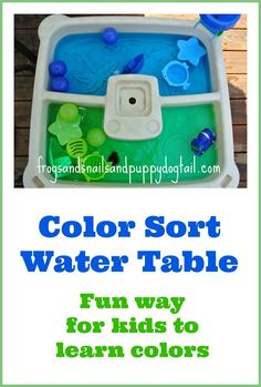 Color Sort Water Bin or Table Play