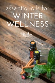Essential Oils for Winter Wellness | Yankee Homestead