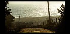 https://flic.kr/p/psBm2P | Hacia la gran matriz | vista de la playa de iloca desde la ruta que conecta a esta con la localidad de Llico