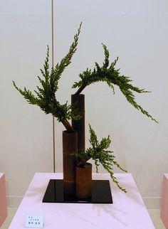 Kobe Ikebana Exhibition | Flickr : partage de photos !