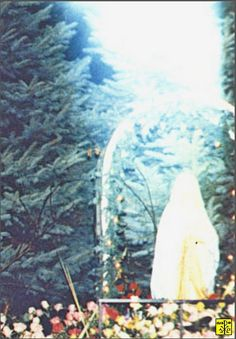 1)- Aparição da Virgem Maria em Marlboro, NJ. Esta foto foi tomada quando a Mãe de Deus estava aparecendo para o vidente Joe Januszkie...