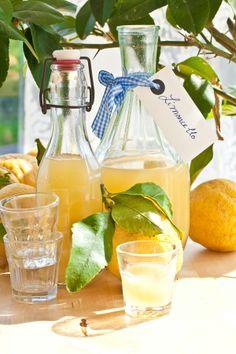 Ciaotutti.nl test de lekkerste limoncello!