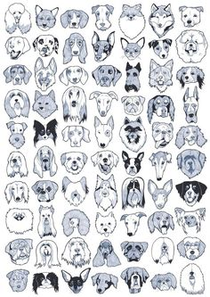 - Tap the pin for the most adorable pawtastic fur baby apparel! You'll love the dog clothes and cat clothes! ♥ - Tap the pin for the most adorable pawtas. Tatoo Dog, Dog Tattoos, Animal Drawings, Art Drawings, Images Vintage, Dog Illustration, Dog Art, Doodle Art, Pet Portraits