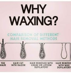 Behrly There Wax Studio – Microblading Waxing Memes, Waxing Tips, Waxing Vs Shaving, Wax Studio, Studio 24, Full Body Wax, Esthetics Room, Sugaring Hair Removal, Salon Quotes