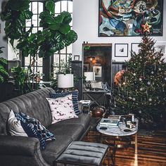 Christmas Tree v. Fiddle Leaf Fig Tree. FIGHT!! 🌿x🎄 Sidenote: This is our first couples Christmas tree. So clearly this is real. 😉 I mean we've done the Home Depot and Ikea test, but this was our first attempt at not only chopping down the tree together but also decorating it. We made it through successfully