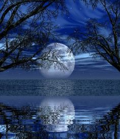 ✯ Moonbeams reflected on the Sea's silvery surface!