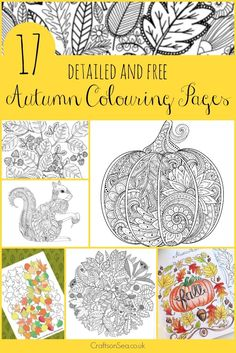 All free and all gorgeous! These beautiful fall and autumn colouring pages are perfect for adults and older children with pumpkins, leaves and forest animals.