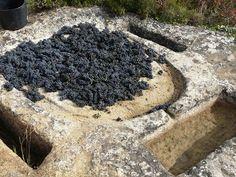 Lagar medieval en la Rioja Alavesa (España)