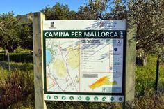 Mallorca con niños. Excursion Cami de Sa Figuera