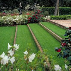 Grass steps on sloping lawn