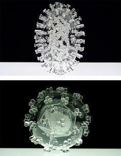 Glass Microbiology by Luke Jerram | Inspiration Grid | Design Inspiration
