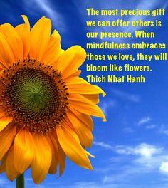 -Serenity Sunday ~ Serenity is an Inside job Reiki, Giant Sunflower, Sunflower Oil, Jesus Calling, Inside Job, Word Of God, Thy Word, Wallpaper Backgrounds, Iphone Wallpapers