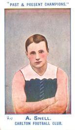 Blueseum - History of the Carlton Football Club Carlton Football Club, Senior Games, Australian Football, Career Goals, Football Season, Archie, Finals, Melbourne, Blues