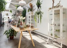Epicentro has overhauled an old building in São Paulo to create a space for a florist, adding second-hand cabinets and tables to display the foliage