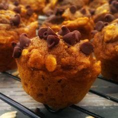 Healthy Mini Pumpkin Oatmeal Chocolate Chip Muffins – The Baking ChocolaTess