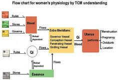 TCM Understanding of Women's Physiology