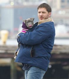 Tom Hardy Bonds with Pit Bull on 'Animal Rescue' Set.  I mean, can it get any better than Tom Hardy and a pittie? Oh, the cuteness!