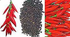 Como fazer Licor de Pimentas : Receitas de Licores Caseiros