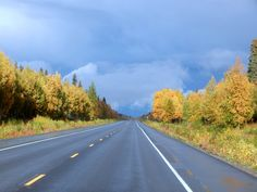 Fall arrives in southcentral Alaska. Traveling the Parks Highway north to Denali National Park.