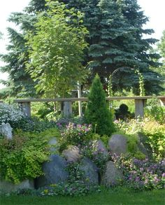 The Rock Garden is an amazing collection of alpine, ground covers, hosta and many other types of plants.