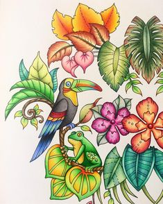 Inspirational Coloring Pages by @johannabasfordfan