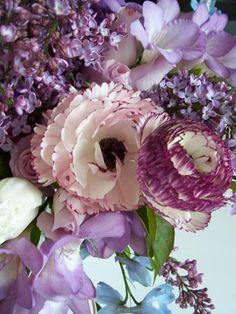 Purple flowers maybe?