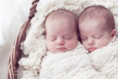 Canberra Twin  photographer newborn babies photography