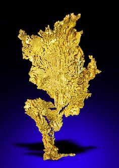 "bijoux-et-mineraux: "" Gold - Eagle`s Nest Mine, Placer Co. Minerals And Gemstones, Crystals Minerals, Rocks And Minerals, Gold Prospecting, Mineral Stone, Rocks And Gems, Gold Platinum, Gold Coins, Precious Metals"