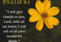 Bible Verses About Psalm , Regular Update Bible Verses, Short Bible Verses, Must Read and Receive Our Blessings in Our Life. And share these Verses. Short Bible Verses, Powerful Bible Verses, Always Be Thankful, Gods Glory, Psalm 91, Worship Songs, Gospel Music, Give Thanks, Eagle