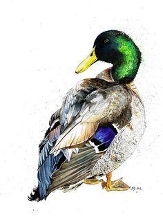 "Mallard Duck ""Bramble"" Mixed Media Painting by Jina Gelder Illustration"
