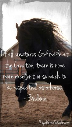 These creatures have such power and grace and beauty that to think that anyone or anything other than an all-powerful glorious God is insane. They are an awe-inspiring gift.