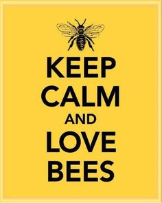 Love Bees! We need to take care of the bees for the world