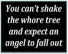 You can't shake the whore tree and expect and angel to fall out.