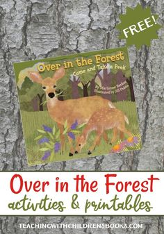 If you're teaching about forests and/or woodlands, you'll love the Over in the Forest activities and printables!