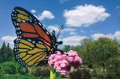 Explore The North Carolina Arboretum in Asheville.
