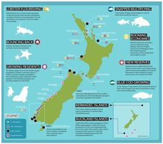 Infographics Poster for NZ Marine Reserves by Nick Beel, via Behance