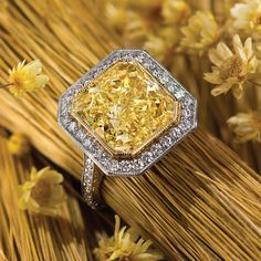 Yellow Diamond Ring by Jeffrey Daniels collection as a division of renowned New York jewelry firm Gem Platinum Cute Jewelry, Bling Jewelry, Vintage Jewelry, Piercings, Yellow Diamond Rings, Unique Diamond Engagement Rings, Bling Wedding, Wedding Reception, Wedding Rings