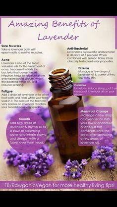 Lavender uses