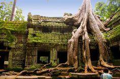 Lugares donde naturaleza y fantasía se conjugan  Conoce estos lugares donde fantasía y realidad se mezclan.