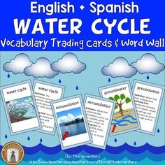 Water Cycle Vocabulary Cards and Word Wall! This is a set of 16 water cycle…