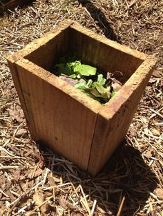 Compost directly in your #garden with a worm #compost tower