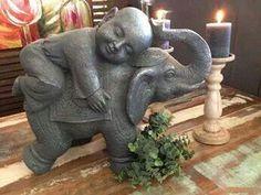 .Boy riding Elephant