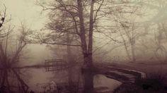 foggy four by on DeviantArt