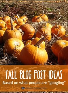 Fall blog post ideas! See what people are searching for, and write your blog posts around that! LOTS of helpful keywords!