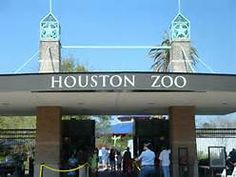 I miss just getting in the car and driving to the zoo without planning. The Woodlands Houston, Houston Zoo, Family Vacations In Texas, Family Road Trips, Hermann Park, Road Trip Packing, Local Attractions, Weekend Fun, City Girl