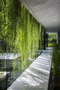 Imagem 17 de 22 da galeria de Spa Naman / MIA Design Studio. Fotografia de Oki Hiroyuki