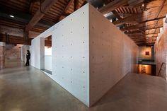 Tadao Ando, Thomas Mayer · Punta della Dogana · Divisare