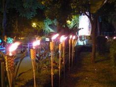 Antorchas para Jardín Wind Turbine, Birthday Candles, Fair Grounds, Tropical, Neon Signs, Lights, Places, Party, Pictures